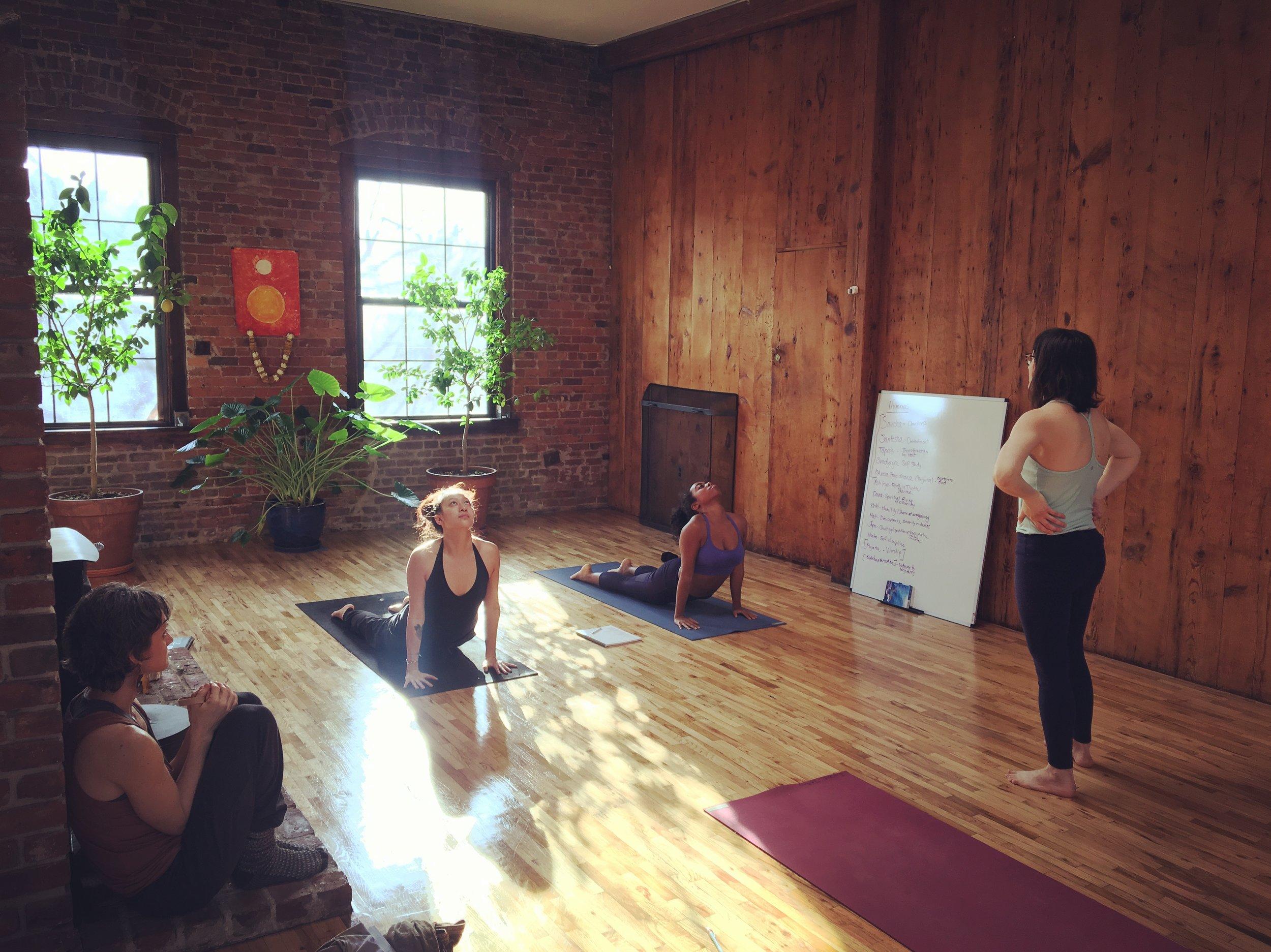Teacher Training New Vibe Yoga