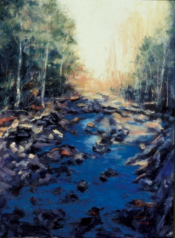 Creek at Natural Bridge