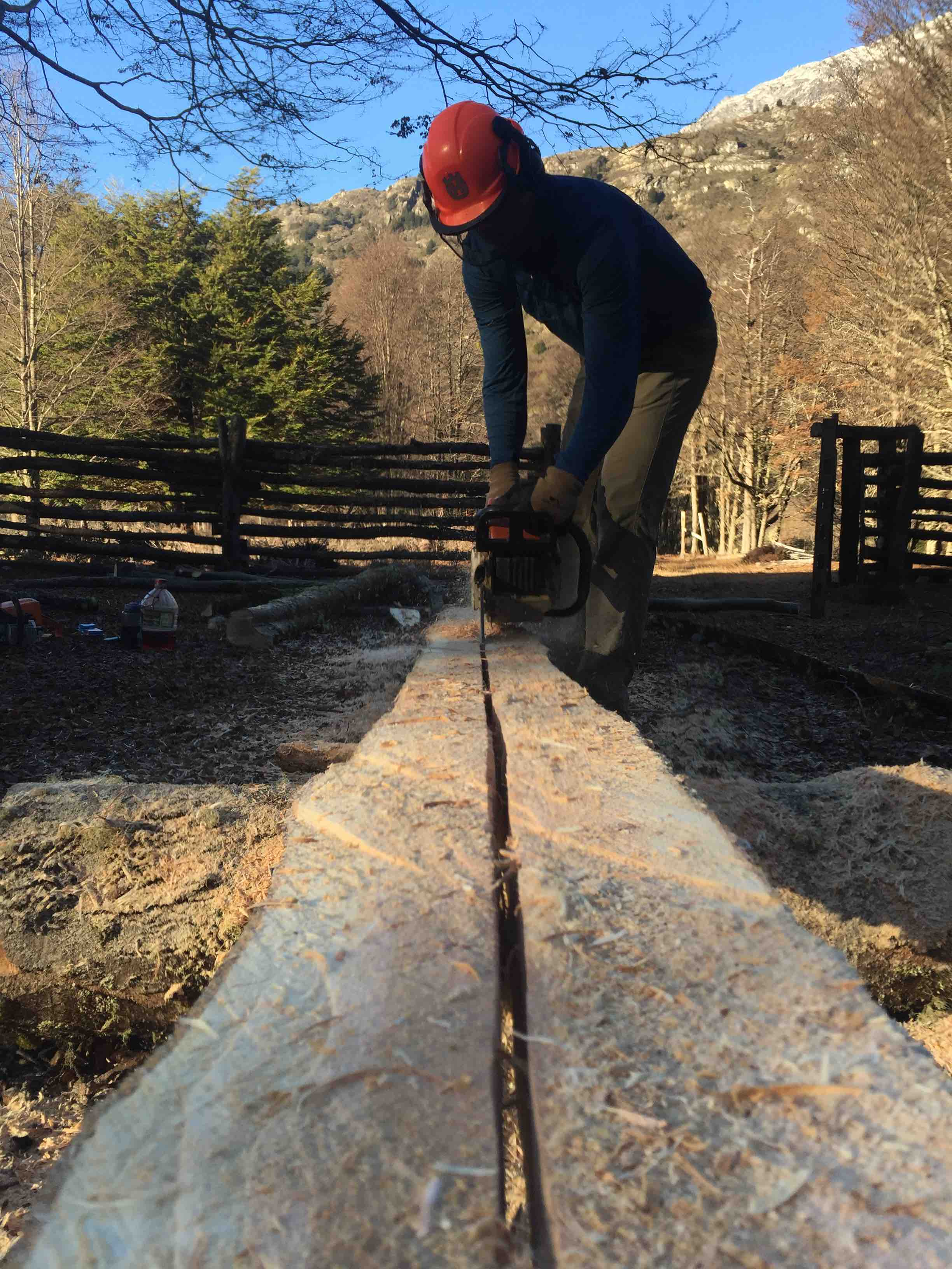Milling Wood for Construction
