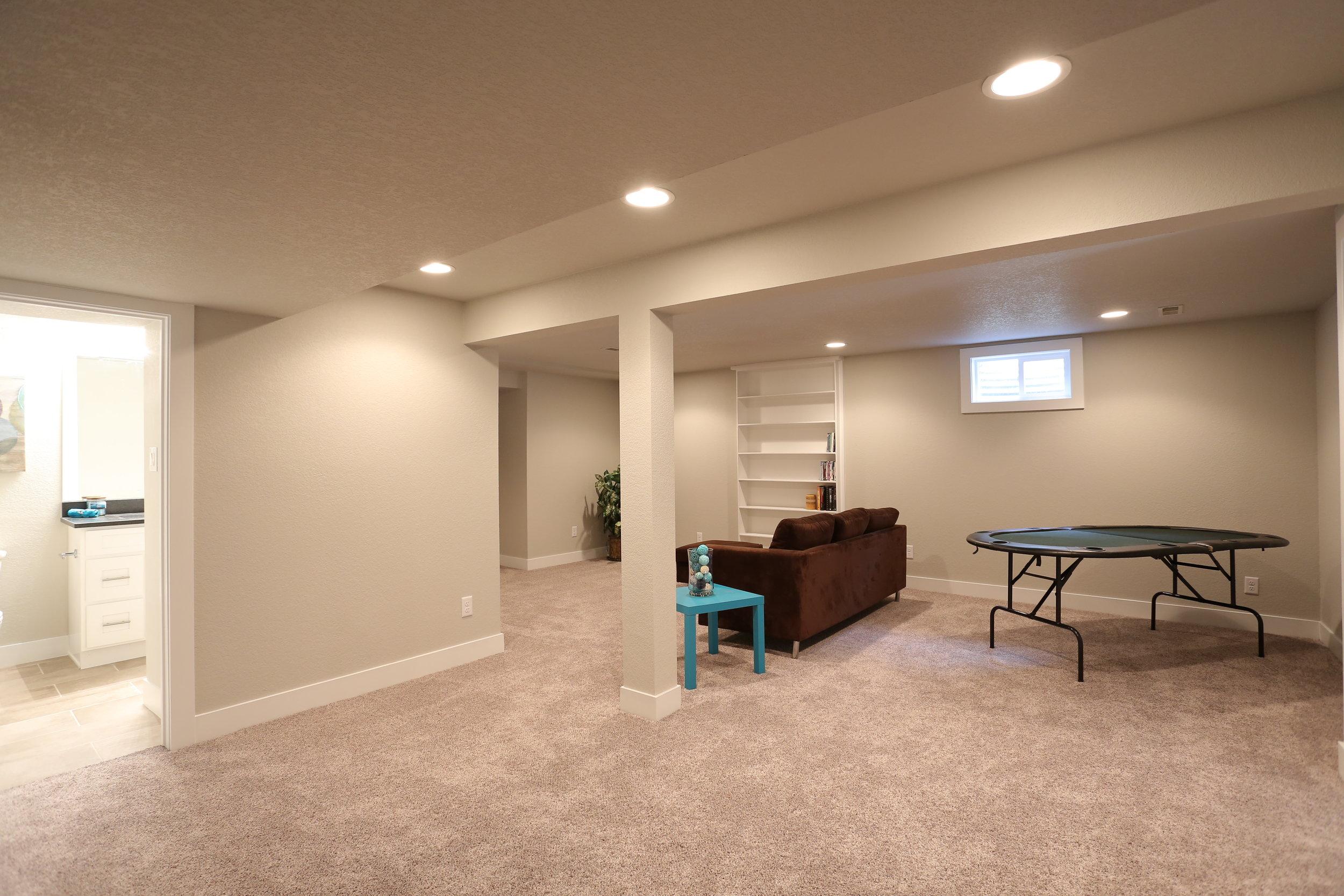 basement rec/media room