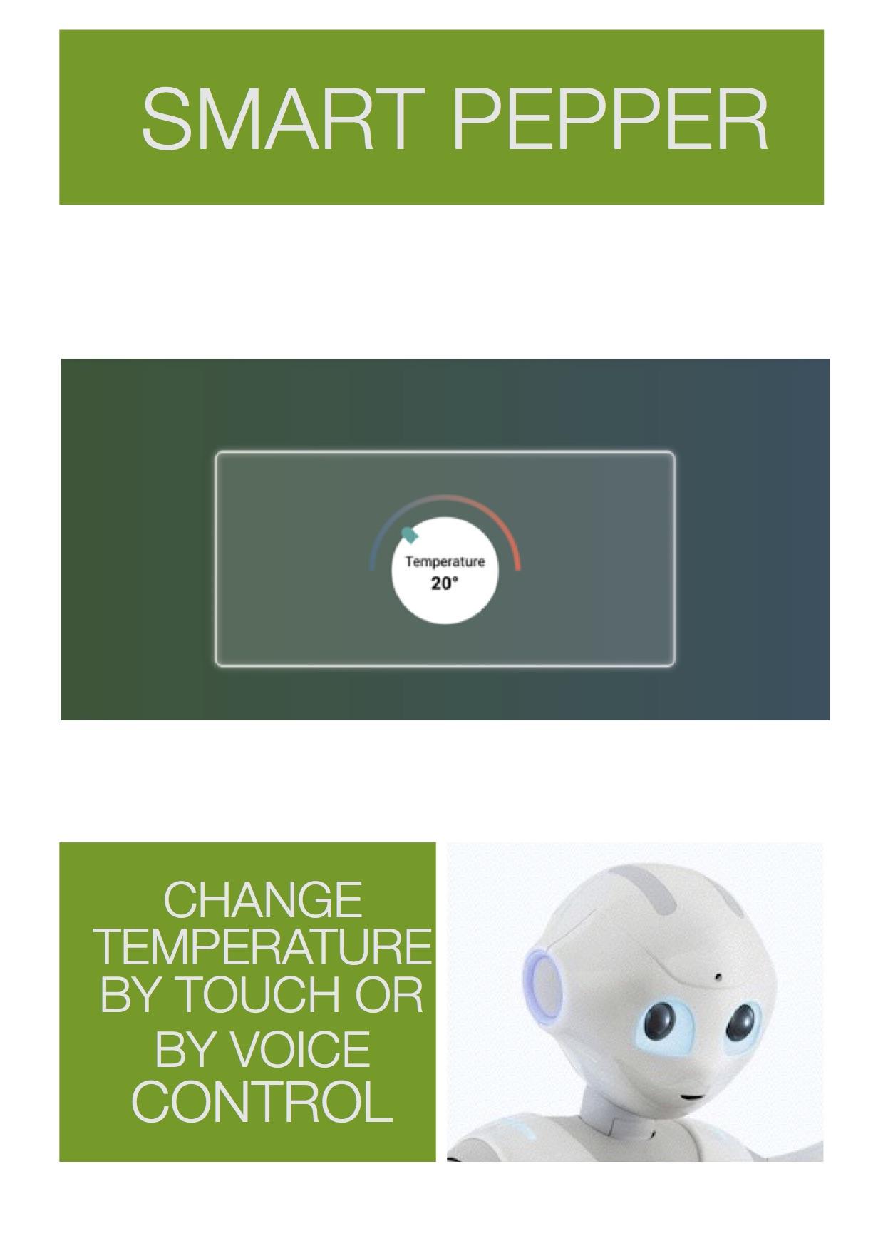 Smart Pepper8.jpg