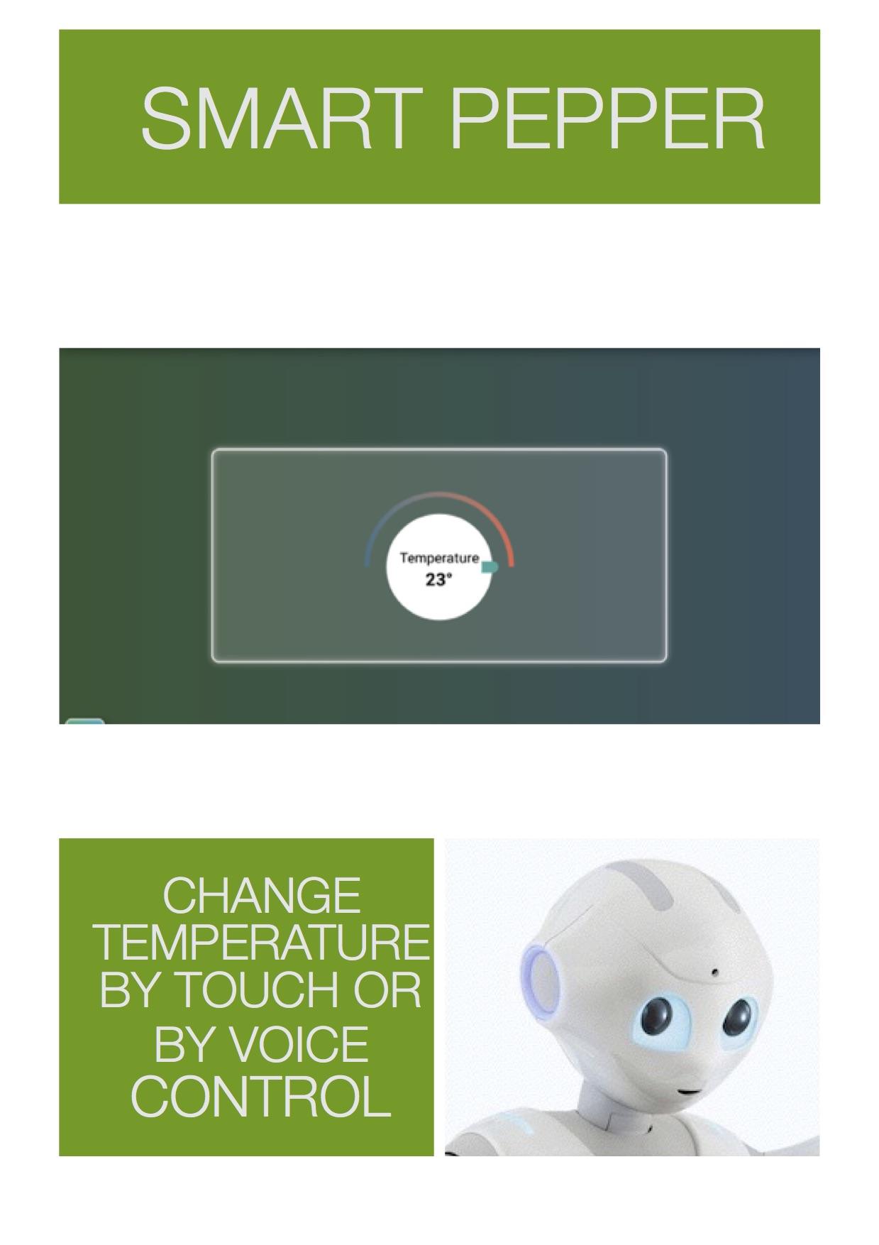 Smart Pepper9.jpg