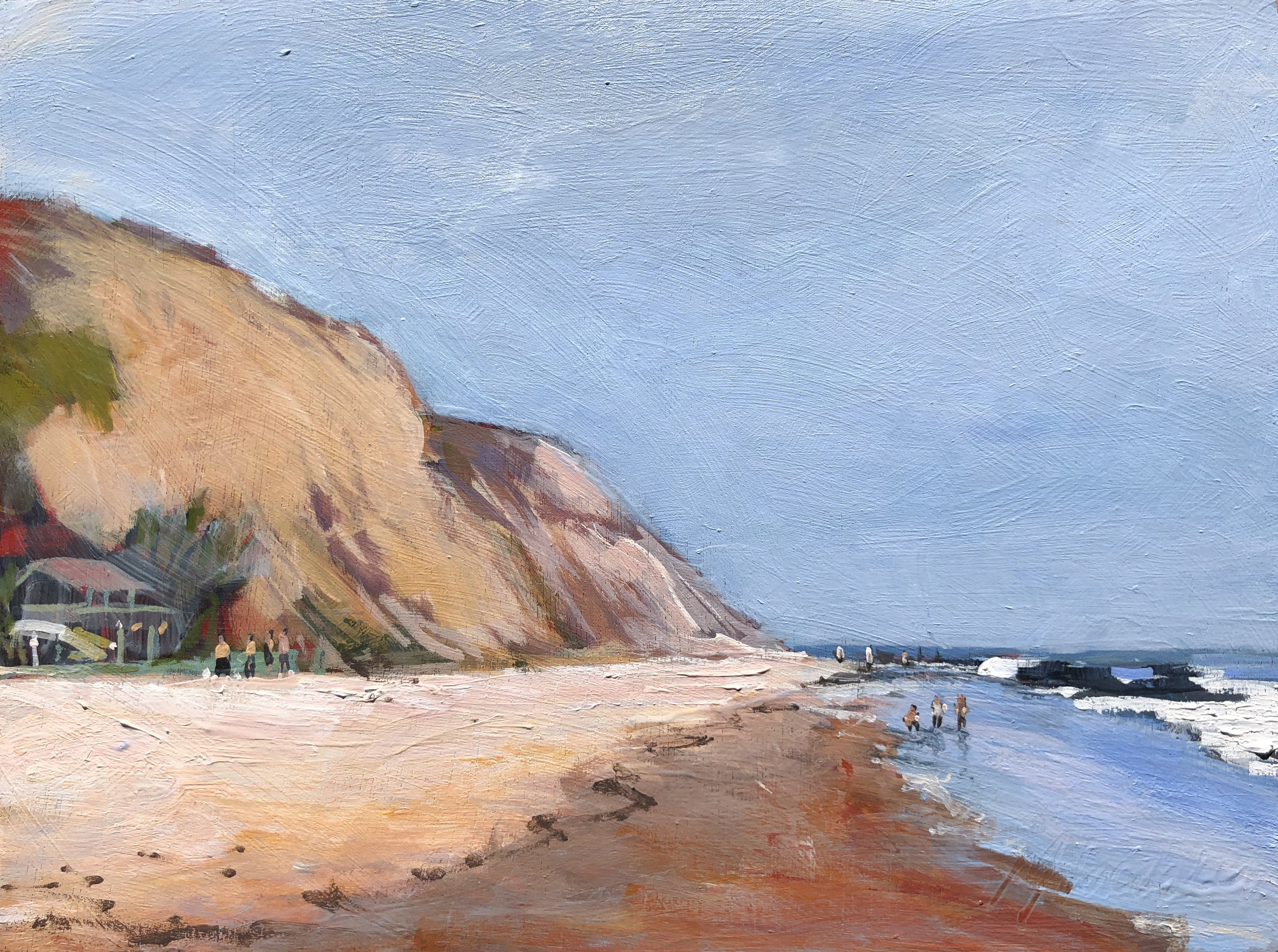 Crystal Cove Perspective  9x12  Acrylic