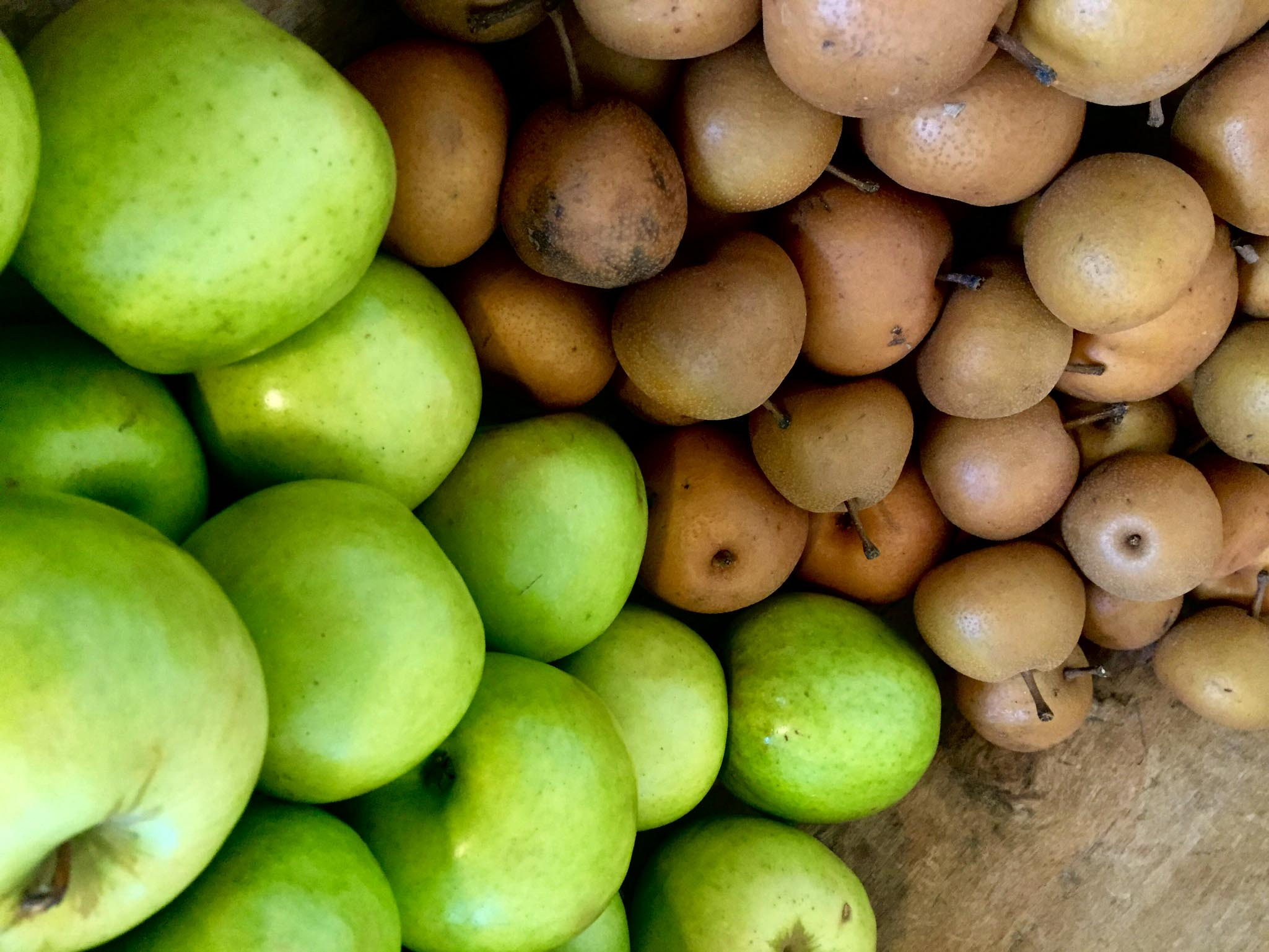 Motsu Apples & Pears - Stone Hollow Farmstead CSA