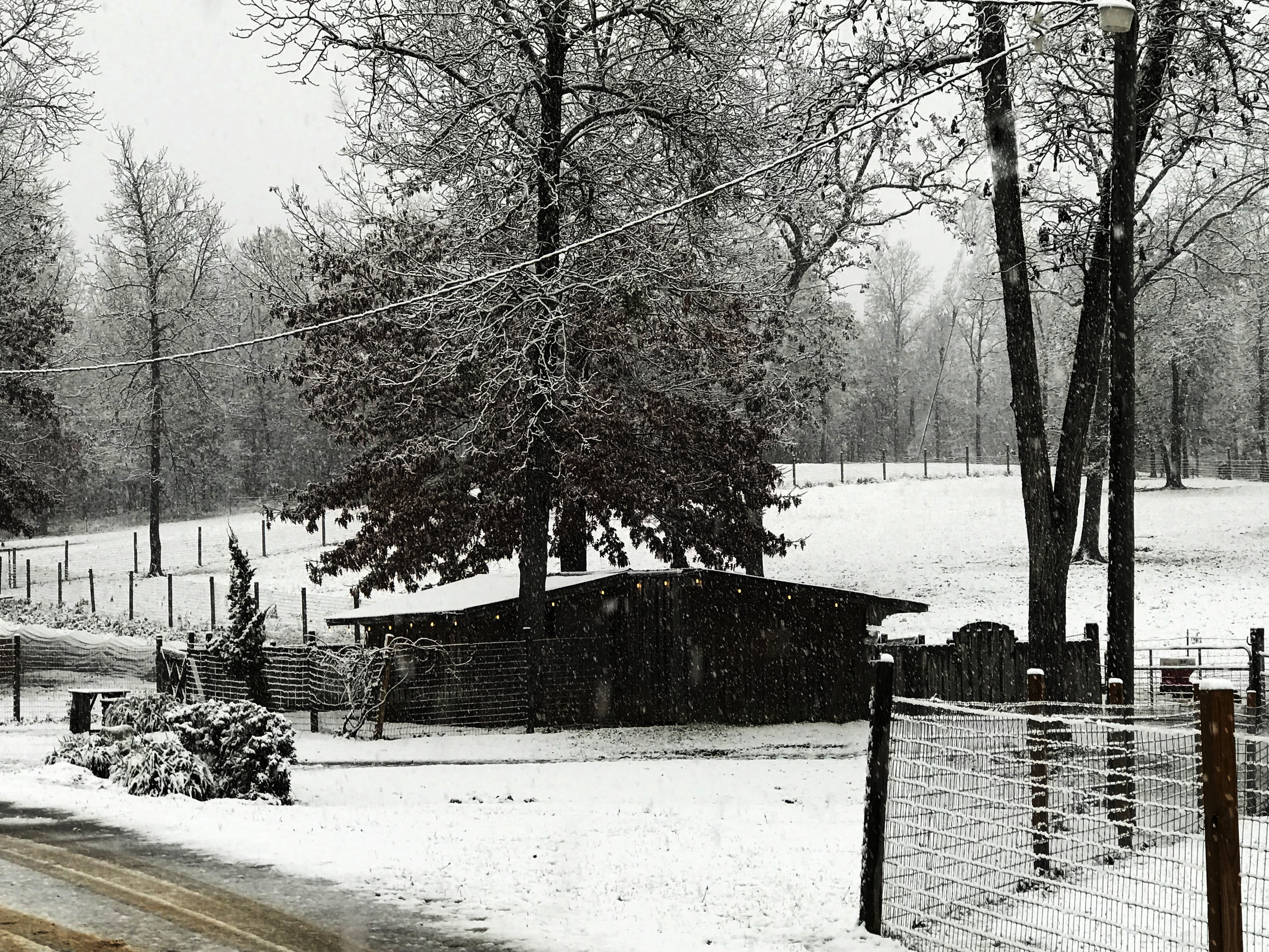 SHF snow photo 1.jpg