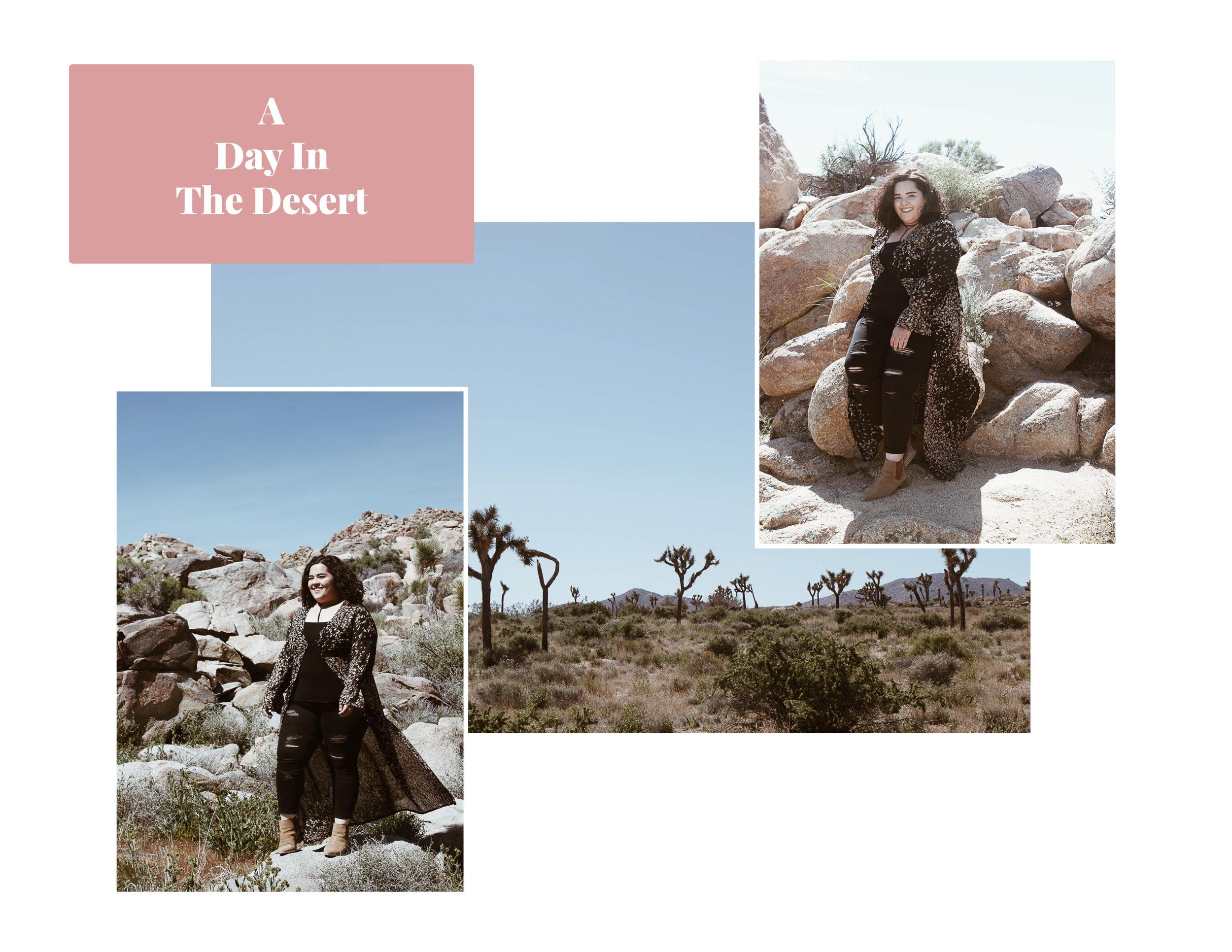 day in desert.jpg