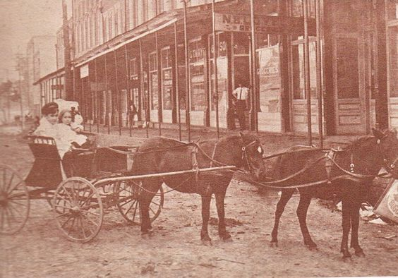 Max and Mildred Burchard of Martin riding in their Pony Cart on Lindell Street in about 1902. Photograph courtesy of Ms. Bea Dean