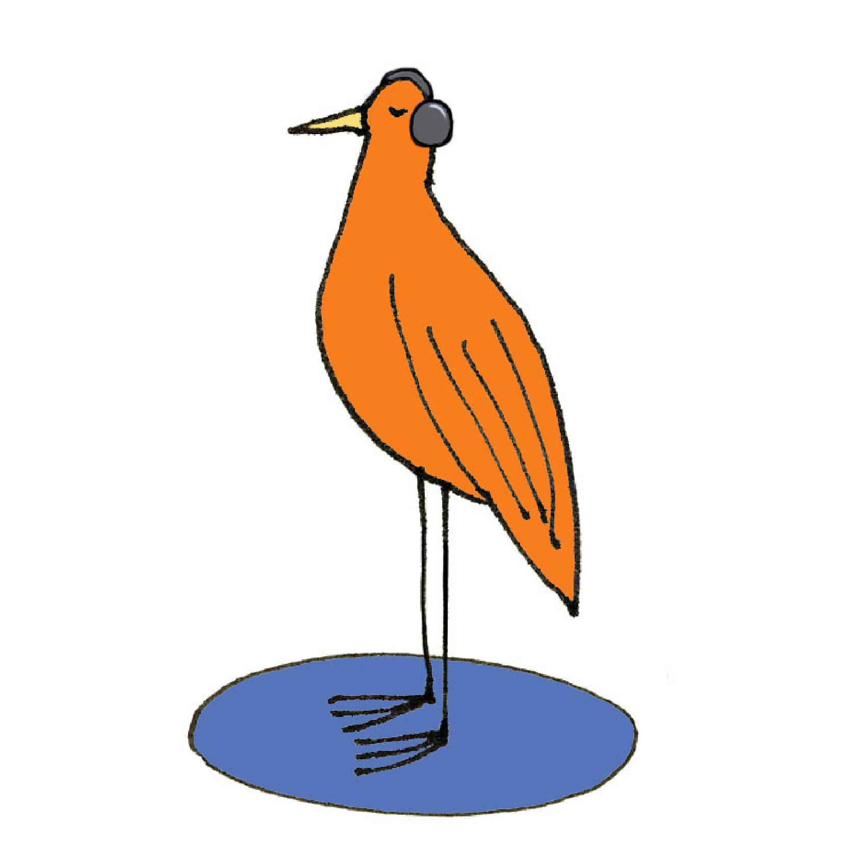skg_bird-listening_square_WEB.jpg