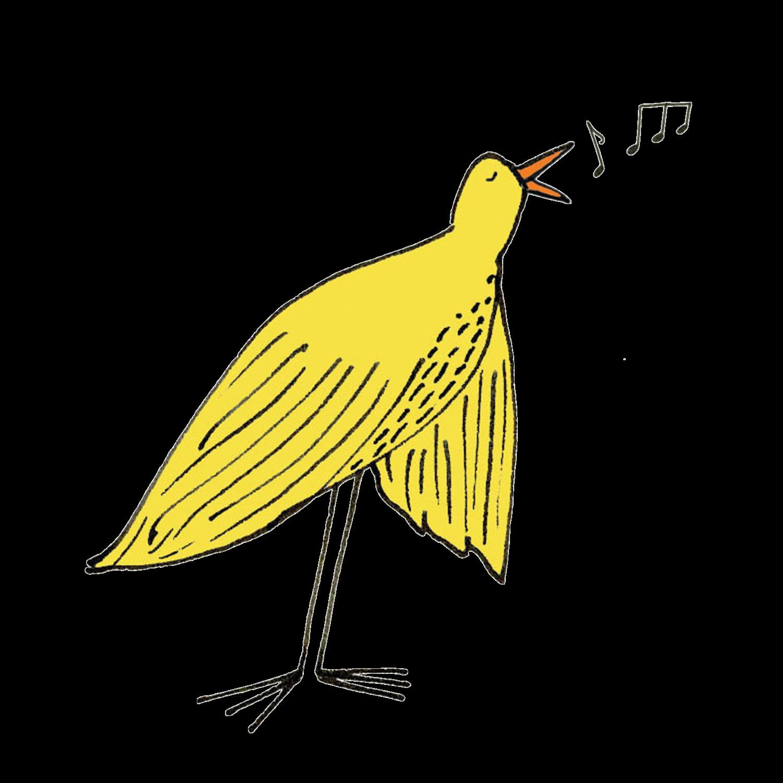 bird-music-joy_web.jpg