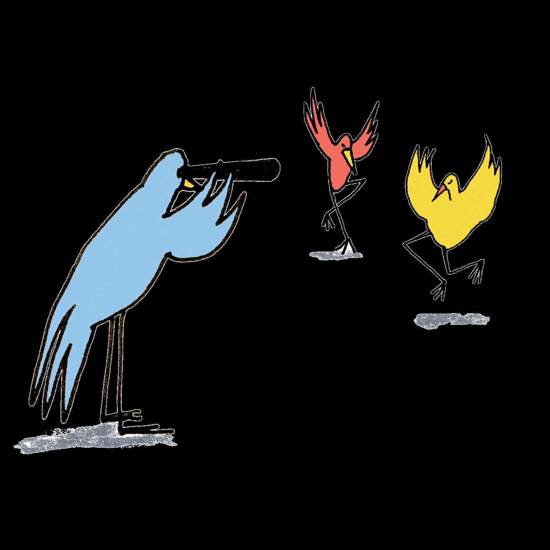 bird-telescope_web.jpg