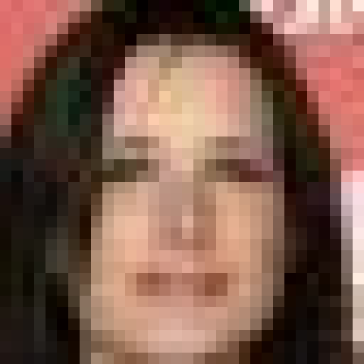 Downsampled input (32x32)