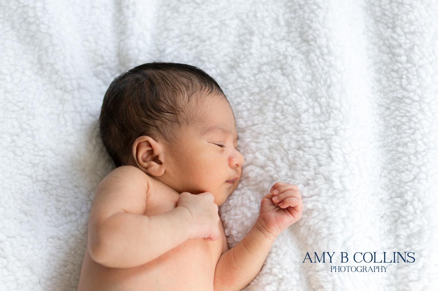 Amy_B_Collins_Photography_Newton - 05.jpg