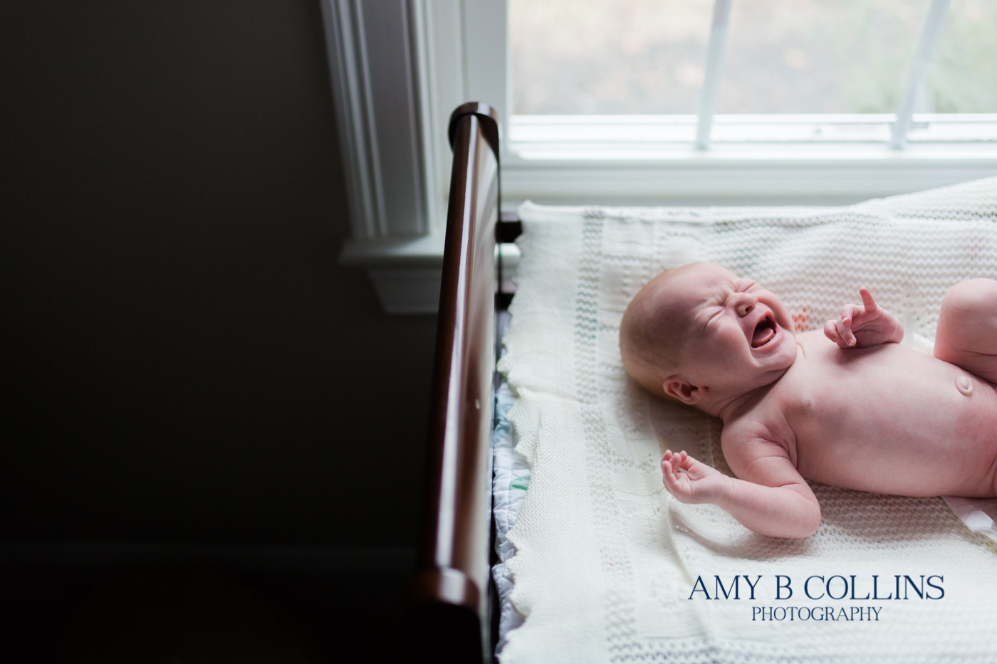 Amy_B_Collins_Photographer_Needham - 04.jpg