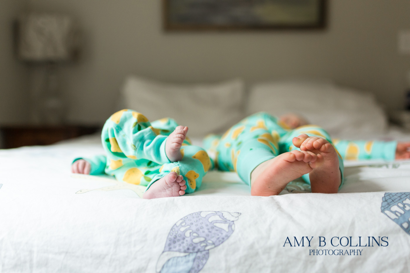 Amy_B_Collins_Photographer_Needham - 18.jpg