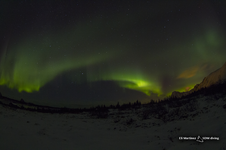 aurora 5.jpg