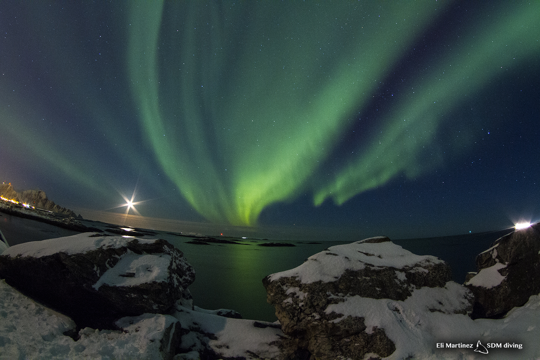 auroras 2.jpg