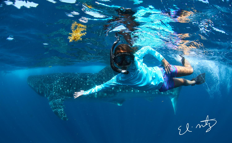 whale shark and sophia.jpg