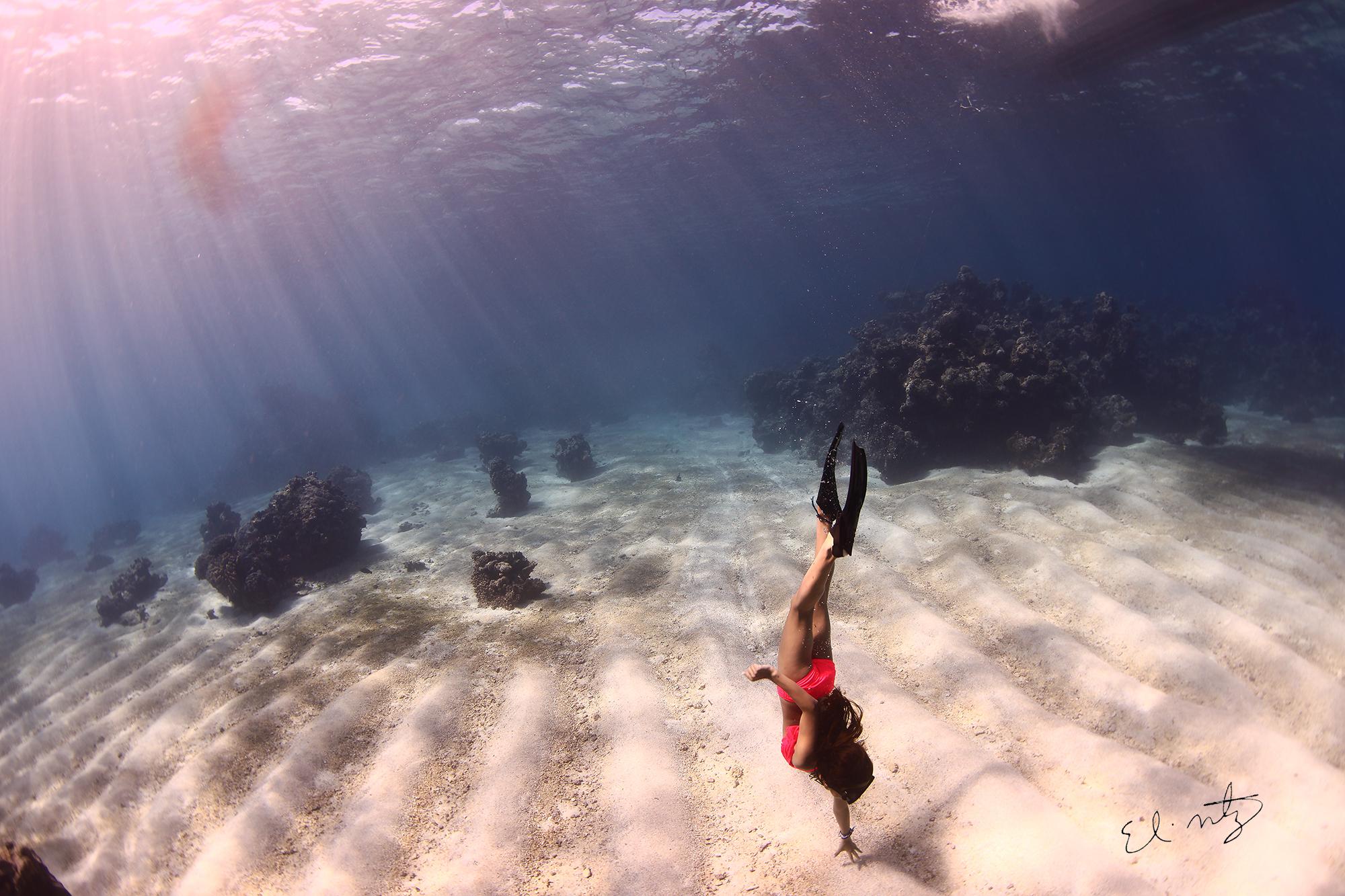 sophia free dive.jpg