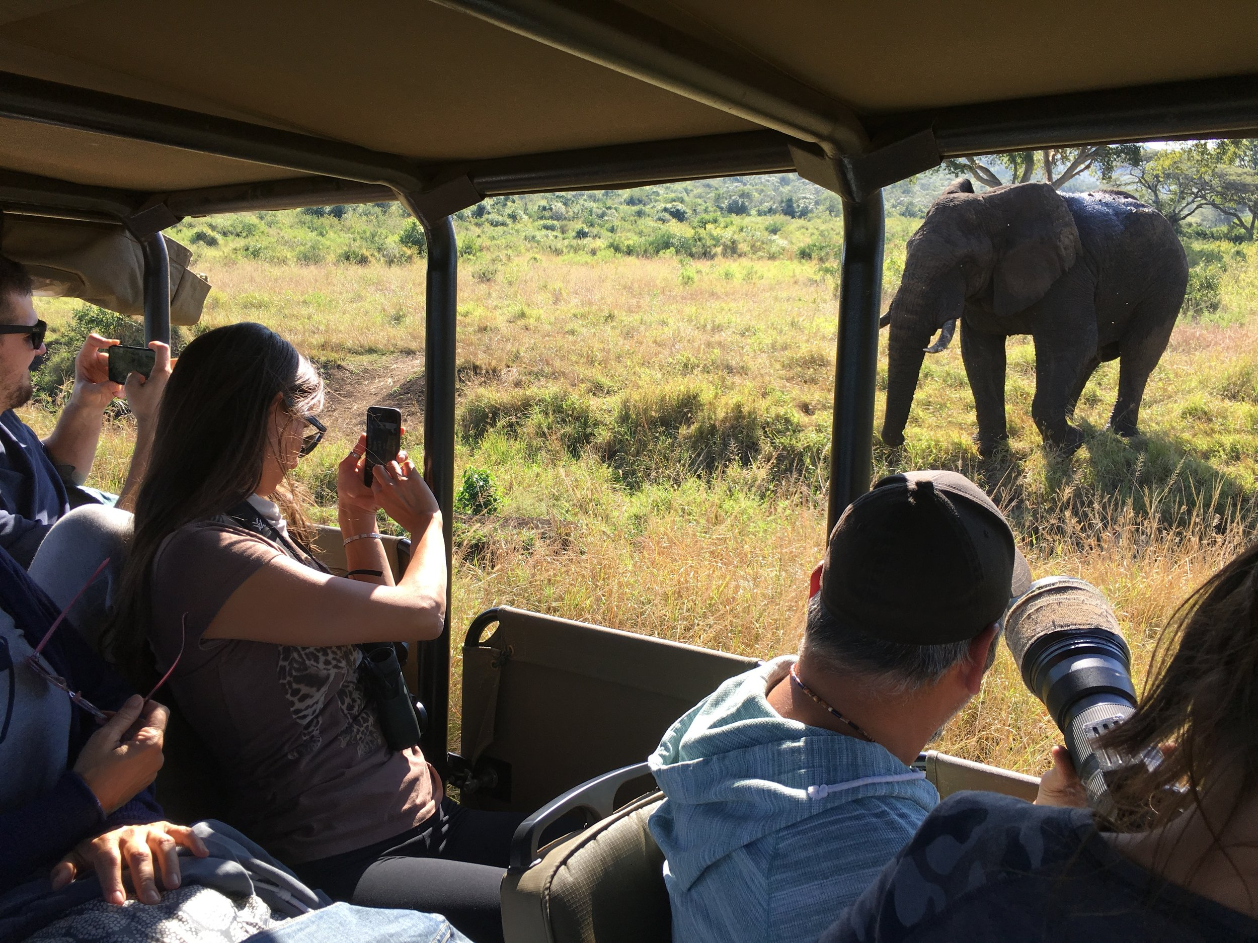 These trips are designed for up close and personal photo opportunites.
