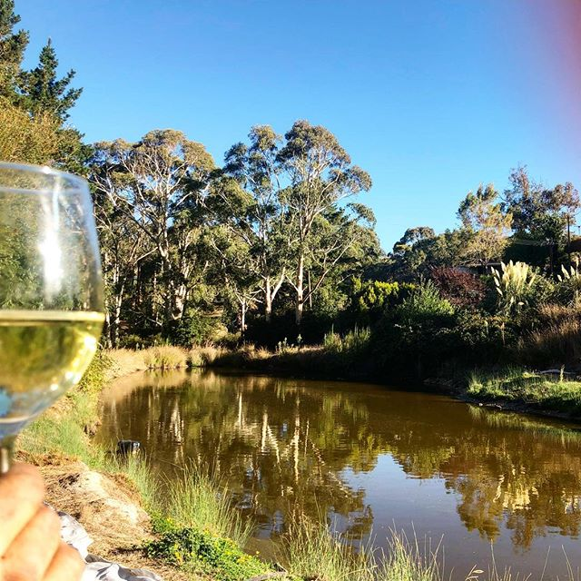 On days like these. #humpday . . . #wednesday #days #work #winetime #happy #nature #dormlife #longwoodretreat #drinks #cheers #salute #hardwork #outdoors #sun #autumn #march #seasons #adelaidehills #mylor #adelaide #southaustralia #getaway #stay #retreat #adlfringe #farm #farmlife #organic