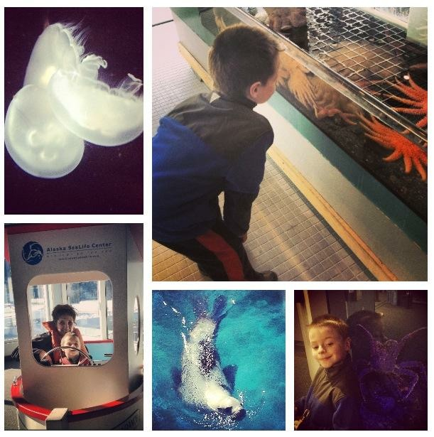 Loads of hands-on activities at the SeaLife Center!