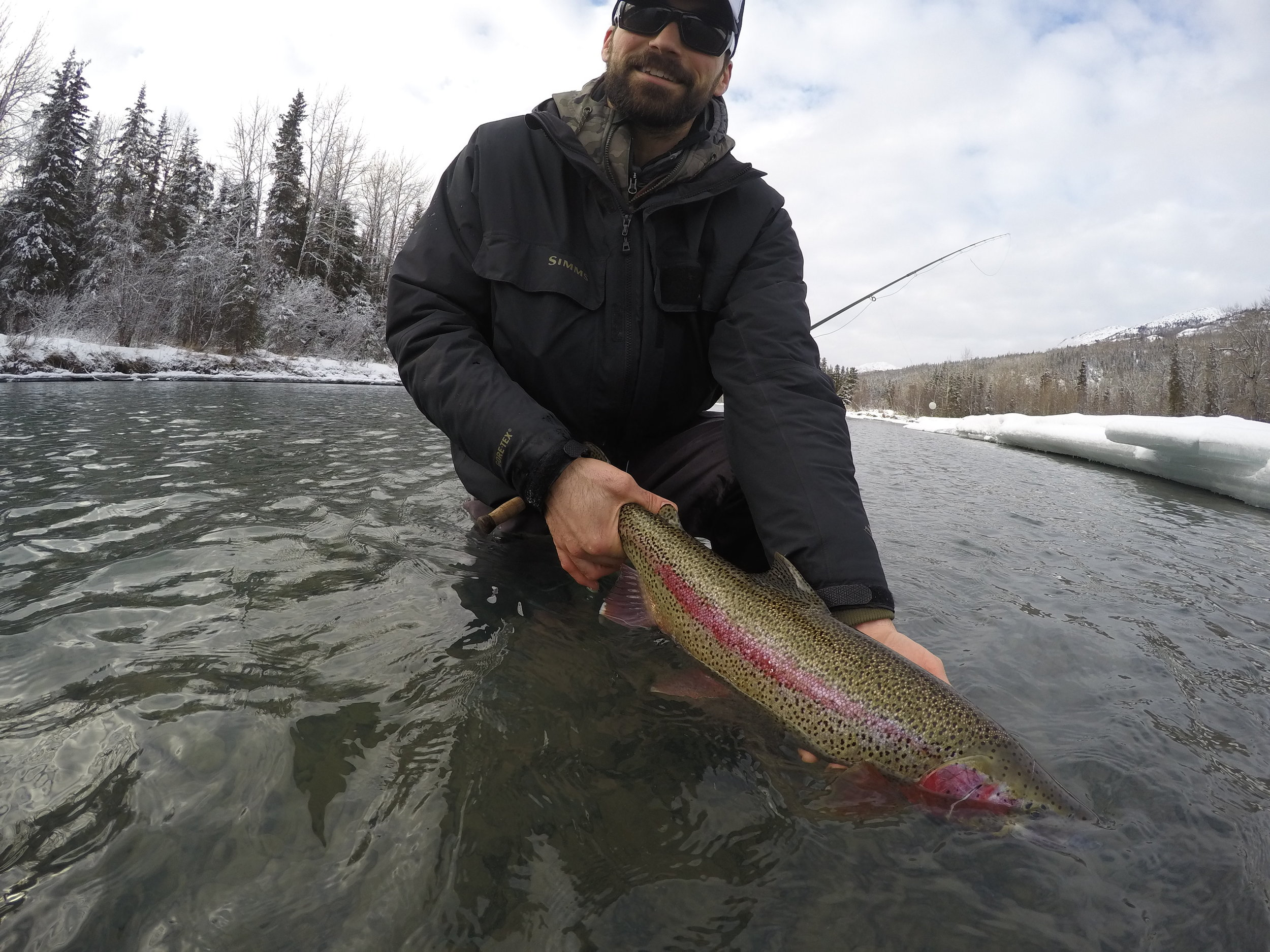 One of my favorite winter Rainbow  Trout on an original hand-tied fly!