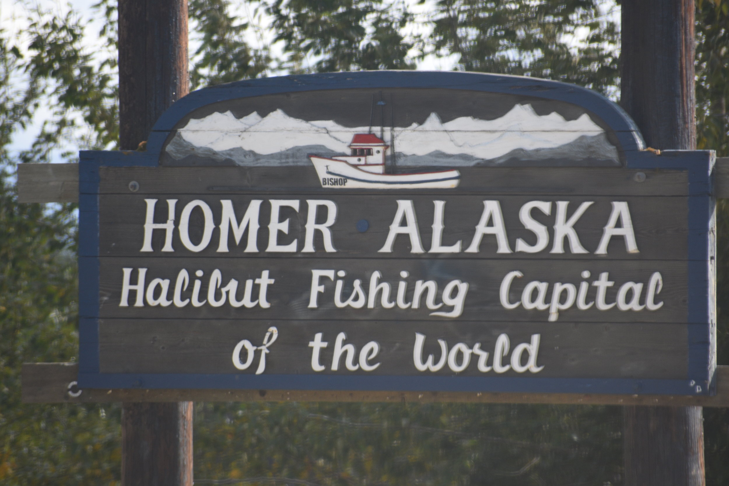 Homer is truly the mecca for Halibut fishing the world over!