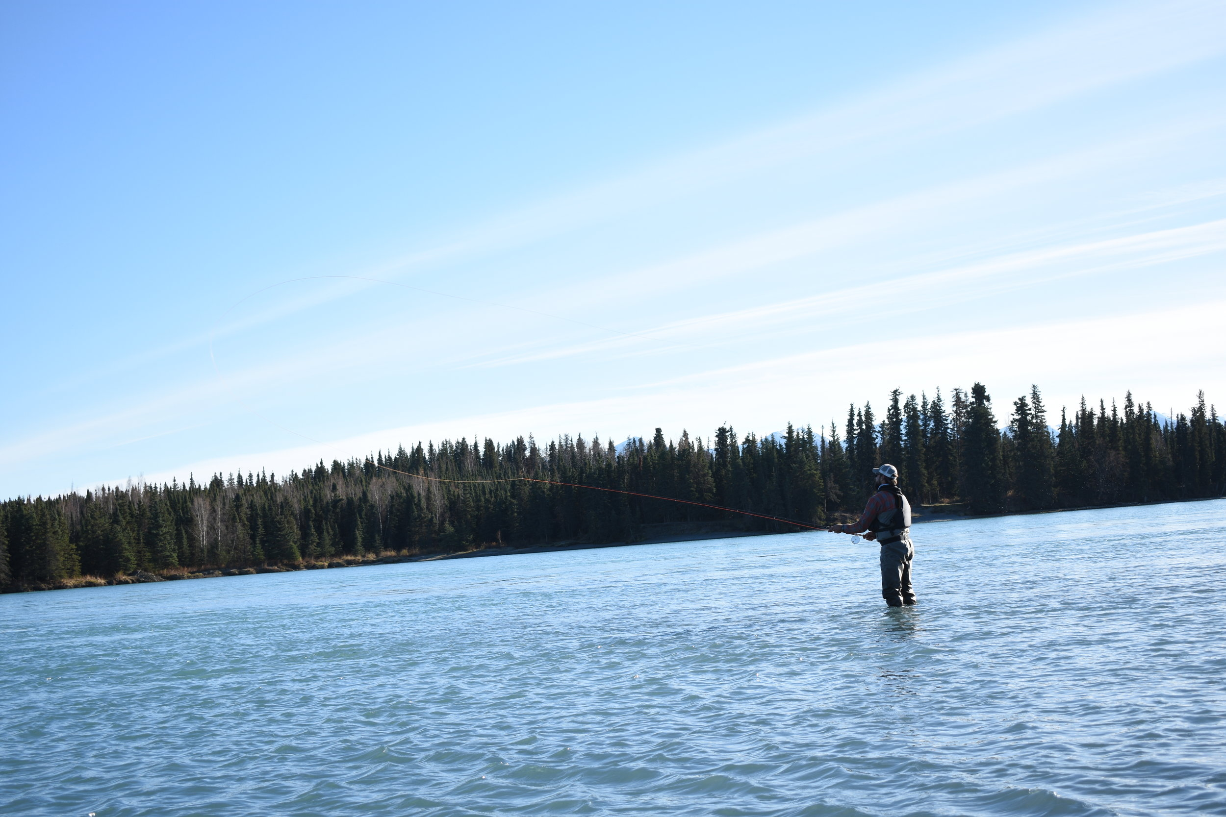 Enjoying the solitude of spey casting for    Rainbow Trout    on the    Middle Kenai River   .