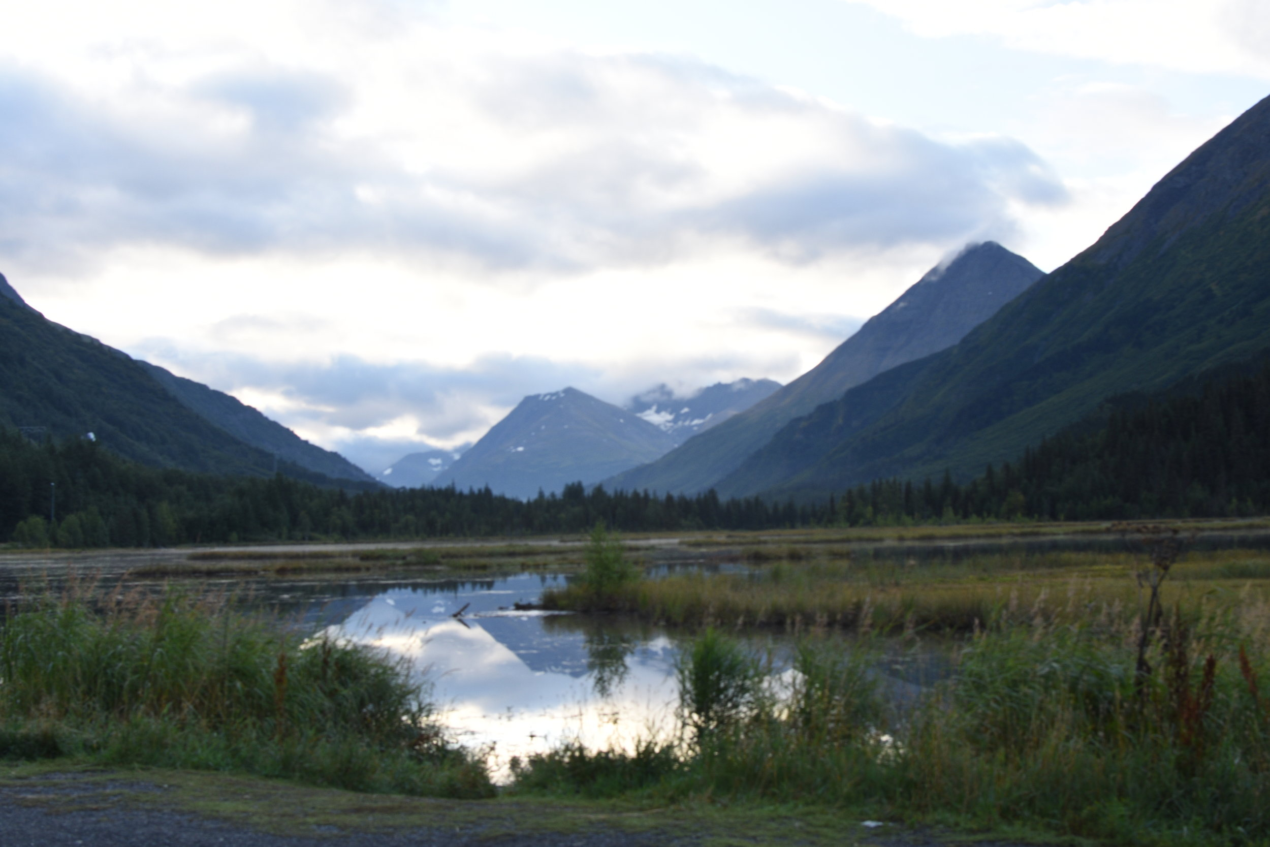 Tern Lake, where the Sterling Highway and Seward Highway meet. Go straight to Seward, AK or turn right towards    Cooper Landing, AK.
