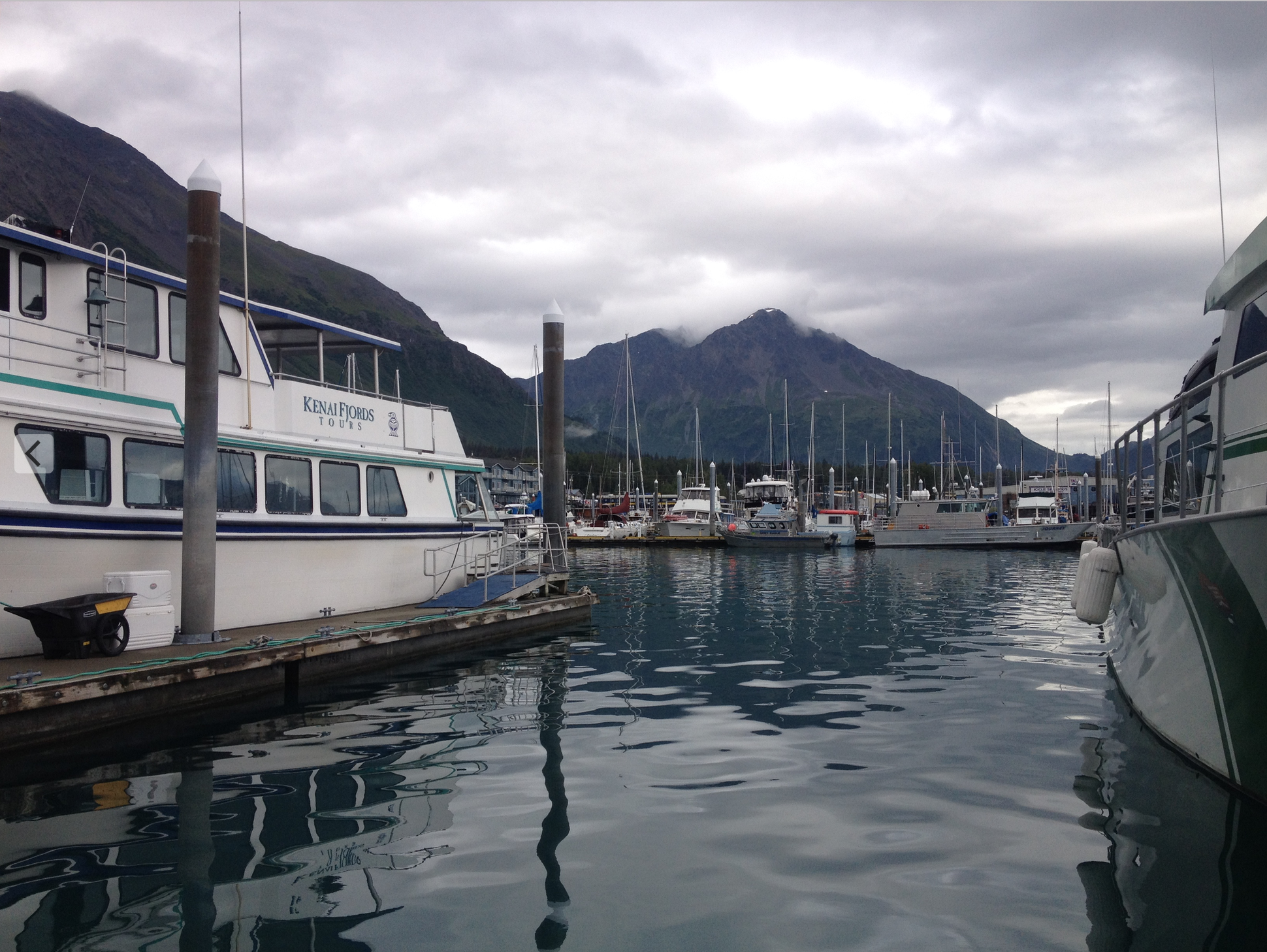 The harbor in Seward, AK. You could spend the afternoon walking the docks, talking to fishermen and travelers alike.