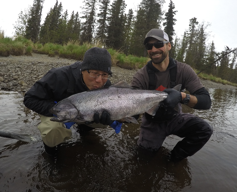 Taking advantage of an early run of hatchery king salmon on the Kasilof is a great tune-up for the season!
