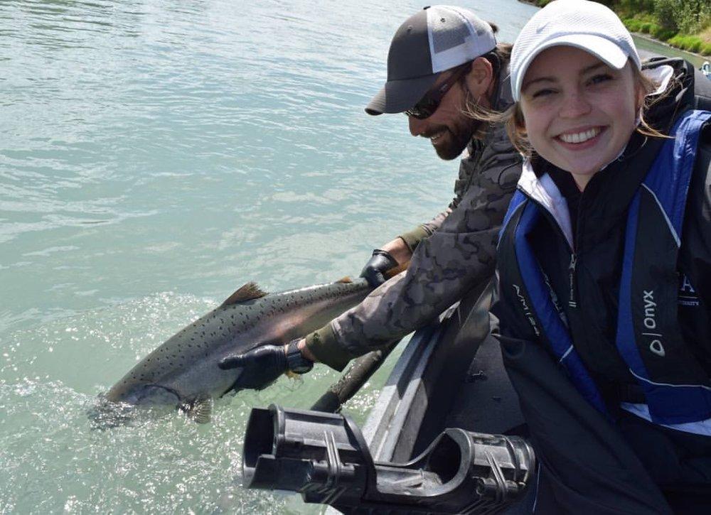 An early season wild king salmon!
