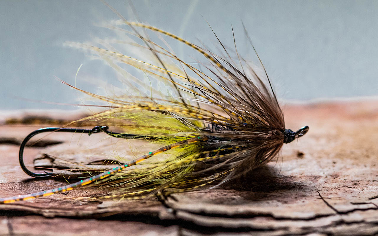 Trout Spey Intruders are a blast to tie, look really good in the water and catch lots of fish on skagit or even scandi lines!