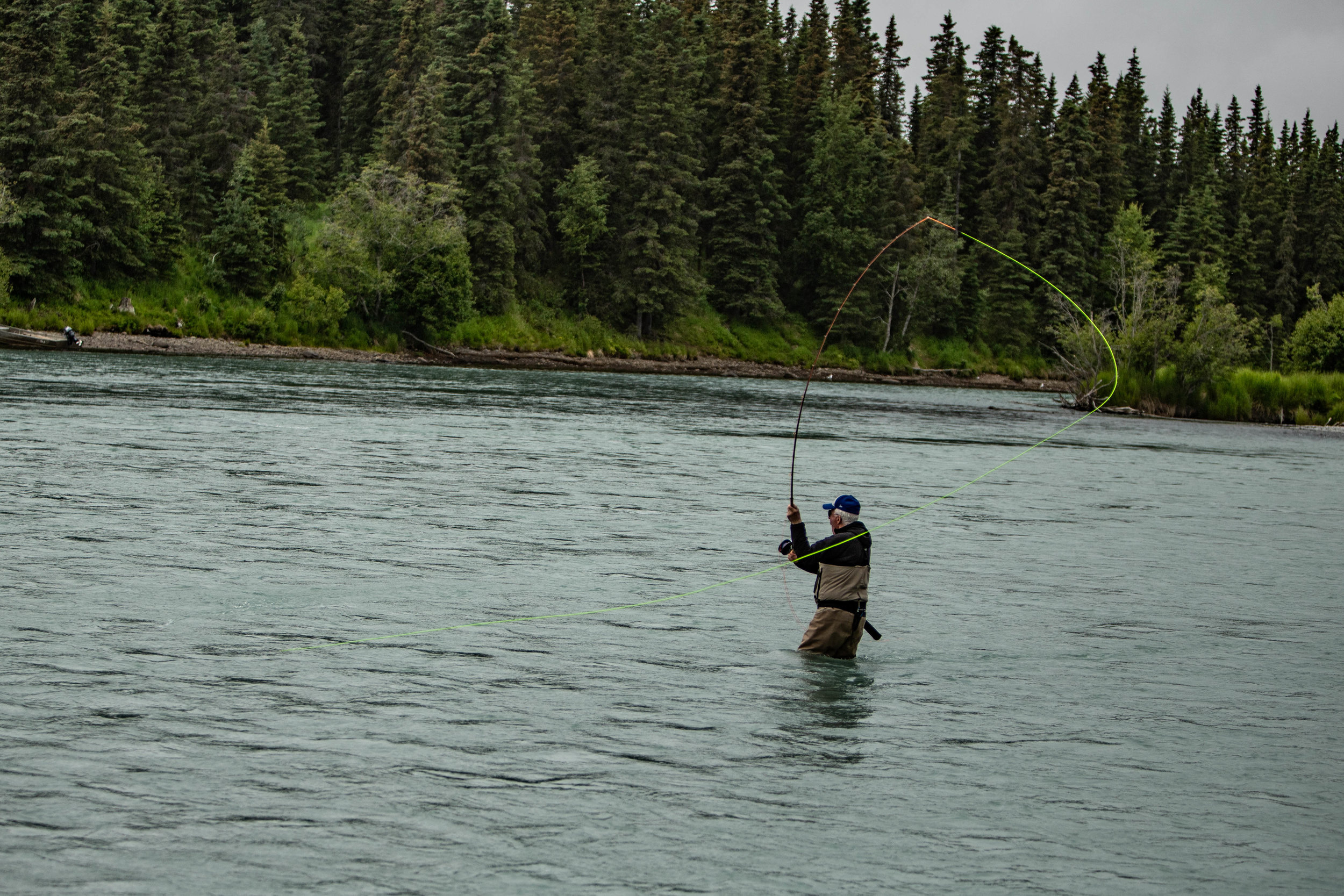 Rich sending a big    spey cast    across the river! We lost count of how many    King Salmon    he hooked this day!