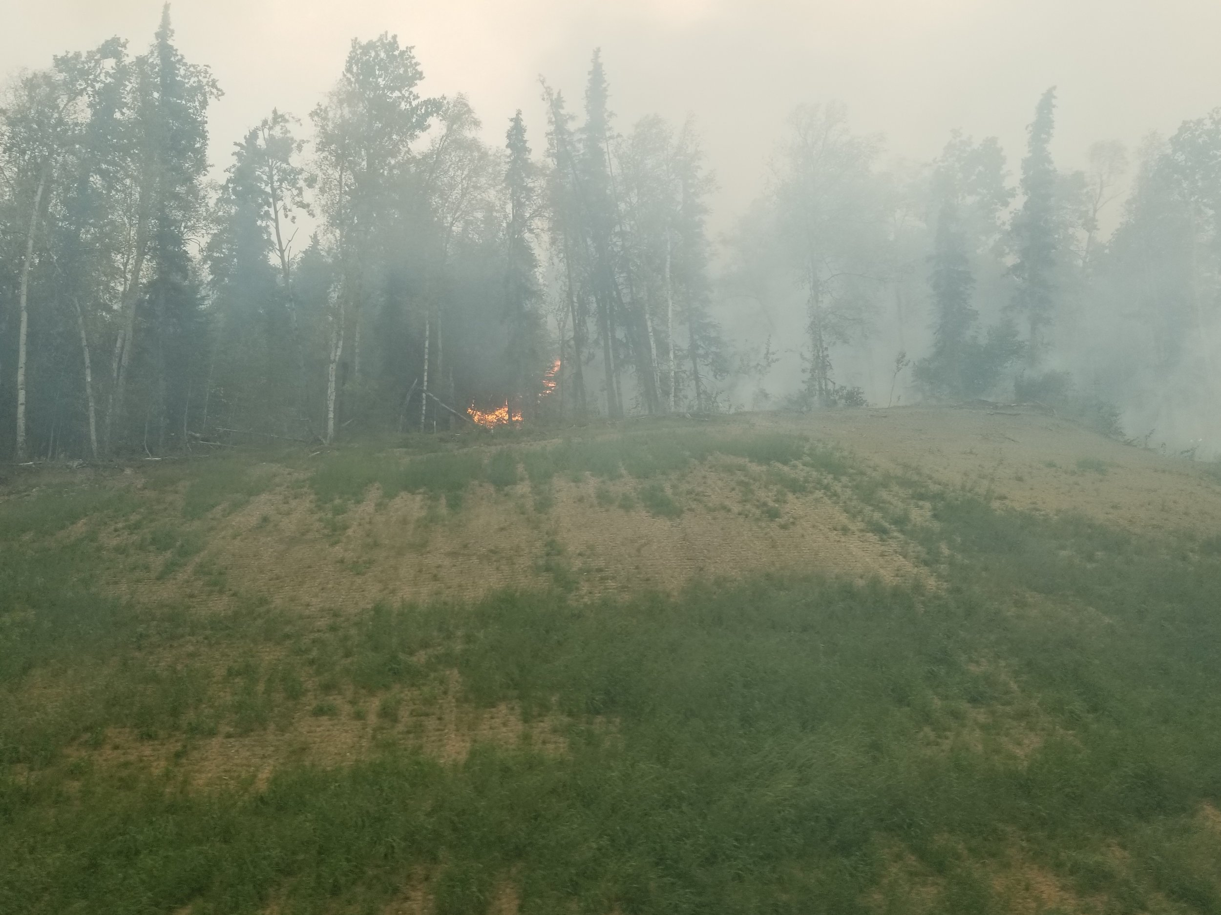 The Swan lake Fire as it approaches the road near Jean Lake on 8/18/19.