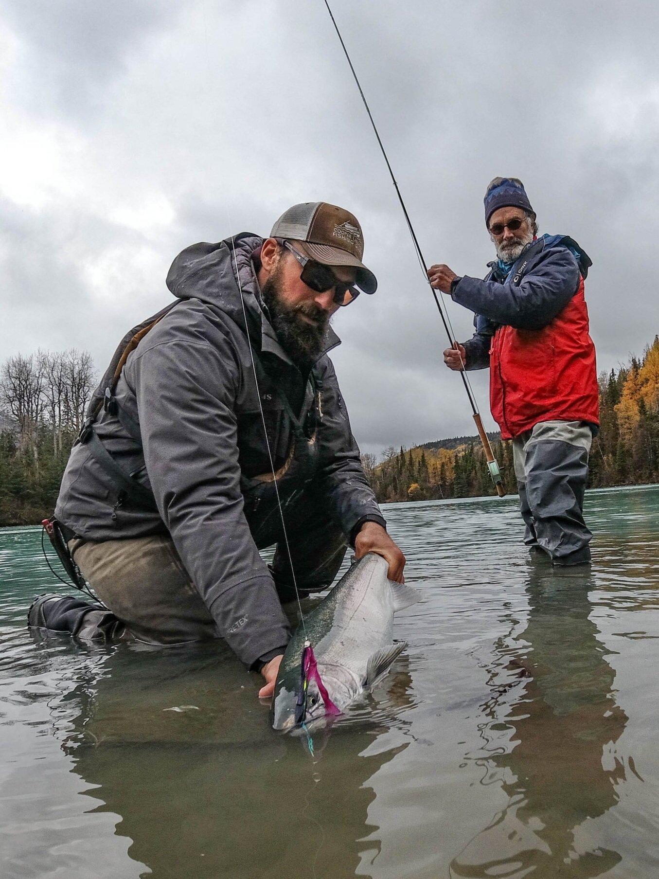Kenai River Coho Salmon