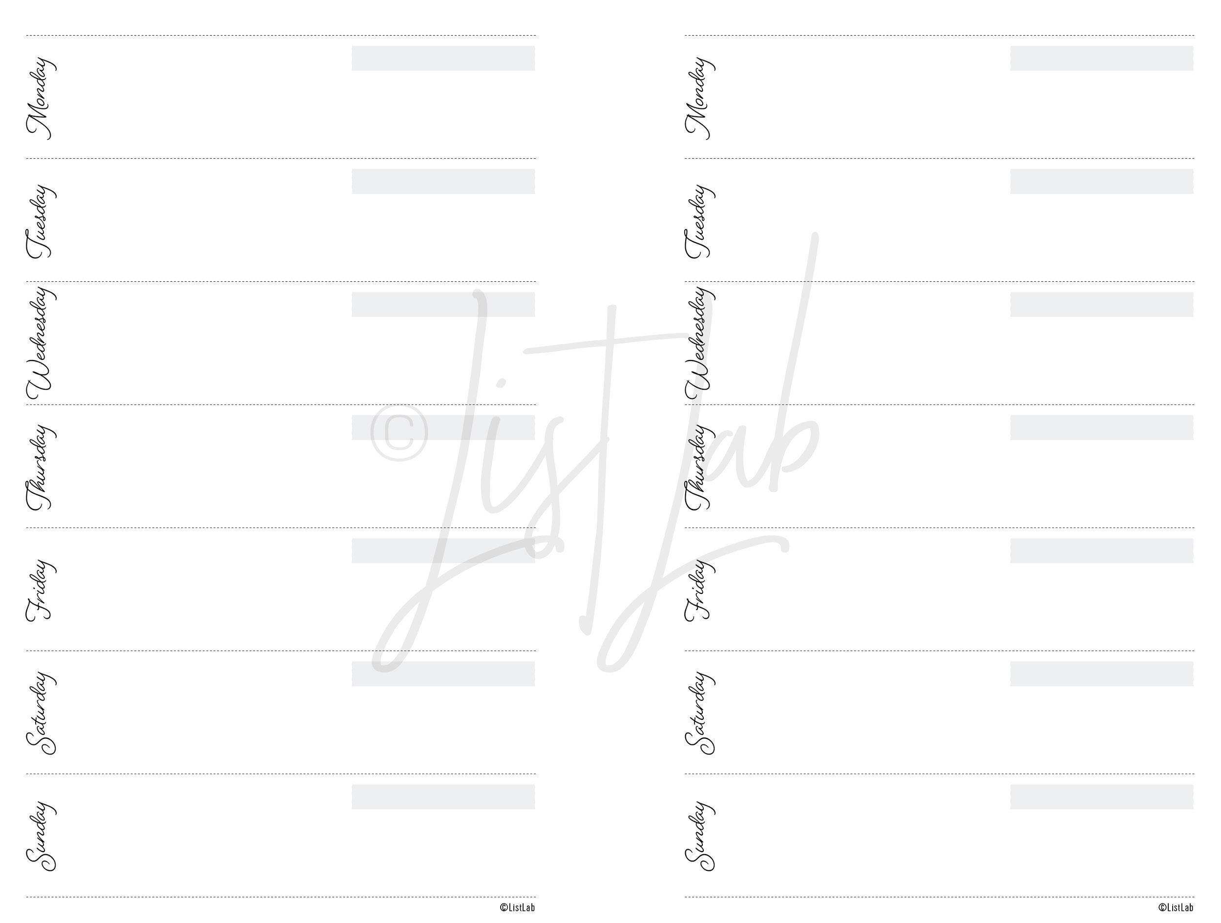 script_disc_mini_undated-06.jpg
