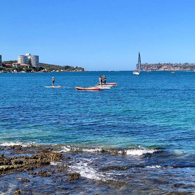 Yoga on Sydney Harbour! 🧘🏻♀️🧘🏻♂️🏄🏻♀️🏄🏼♂️🤸🏼♀️🤸🏼♂️☀️☀️ Sydney was blessed with beautiful weather this weekend so why not practice a bit of Yoga on a stand up paddle board 🙏👍🏻 🧘🏻♂️ 🤸🏼♀️ #sundayspecial #infinitystrap #infinitybrik #yogapawsaus🐾 #wearyourmat #yogablocks #brik #doyogaanywhere #doyogaeverywhere #yogafit #yogainspiration #yogalife #yogaeverydamnday #yogaoutside #strongwomen #stretch #practiceandalliscoming #practicemakesperfect #weekendyoga #namaste #wecandoit #lotuspose #peacockpose #sydneyharbour #manlywharf #standuppaddleboarding
