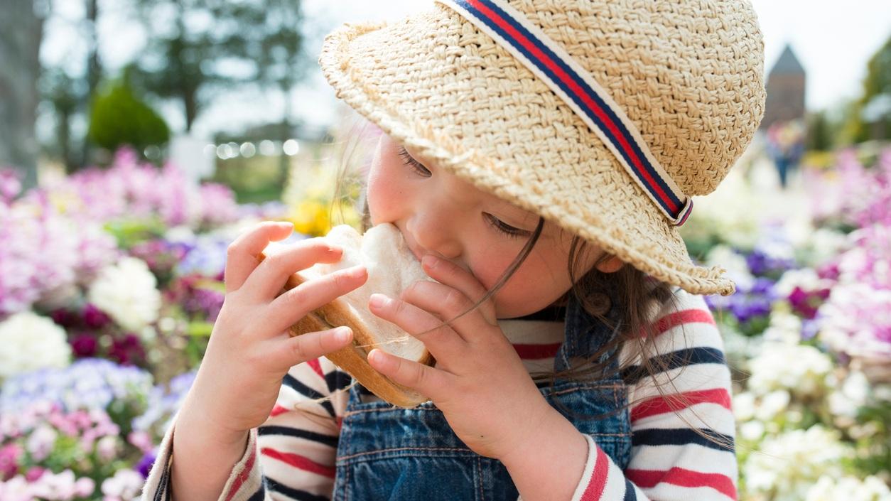 little-girl-eating-lunch.jpg