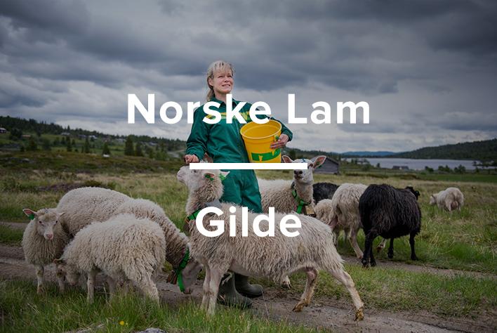 Brand-studio-norske-lam-gilde