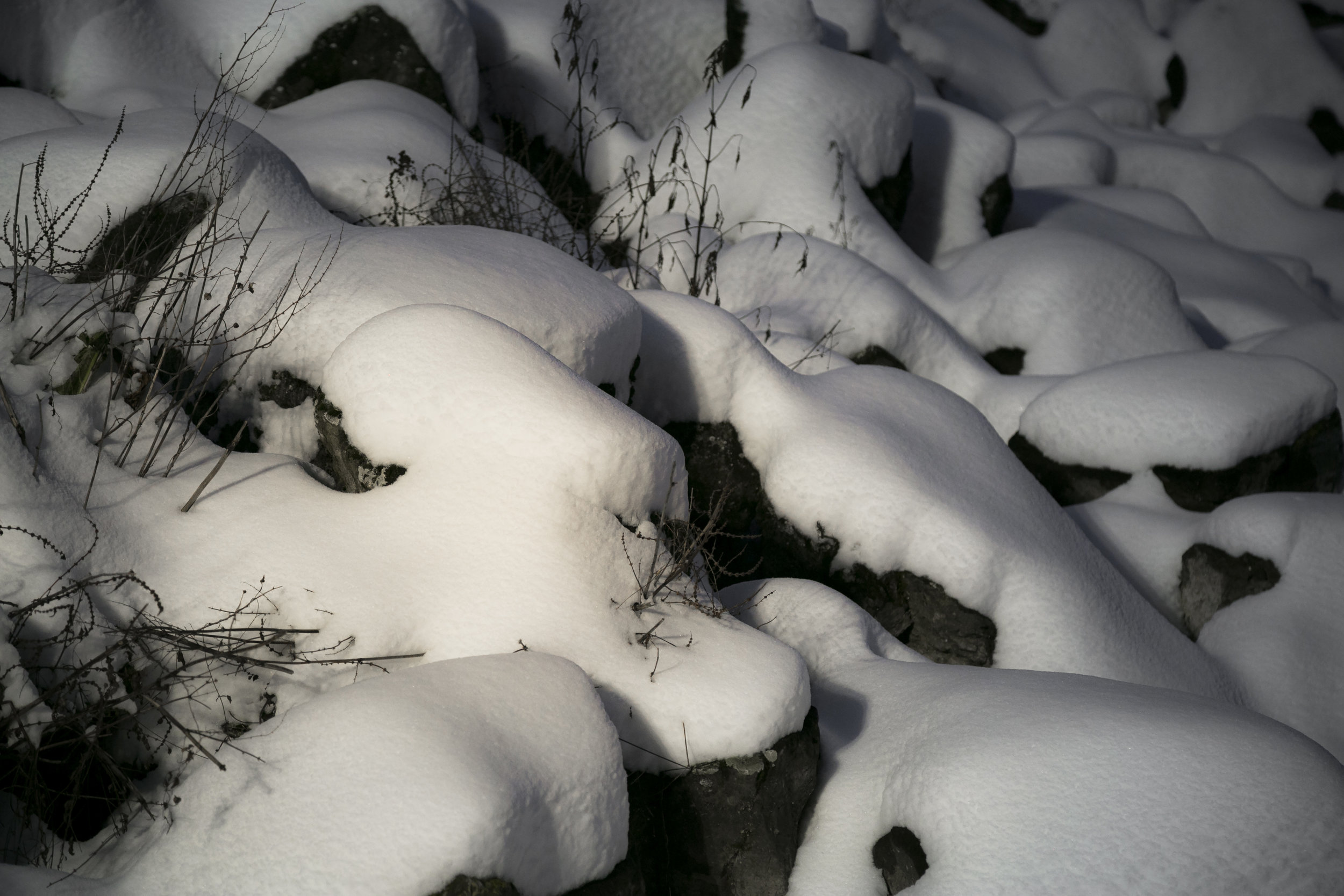 white sculptures-11.jpg