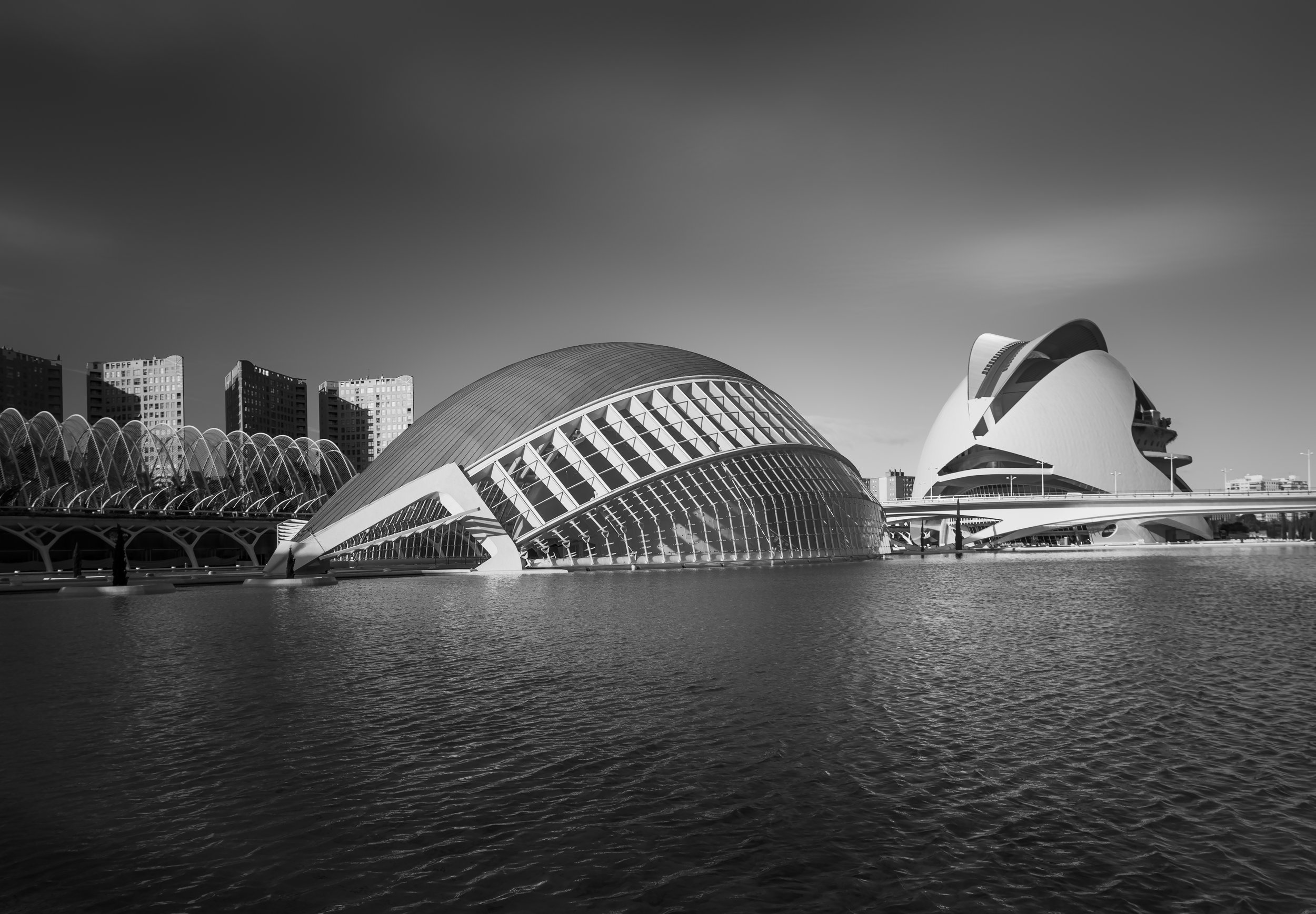 Calatrava-8558_new  version.jpg
