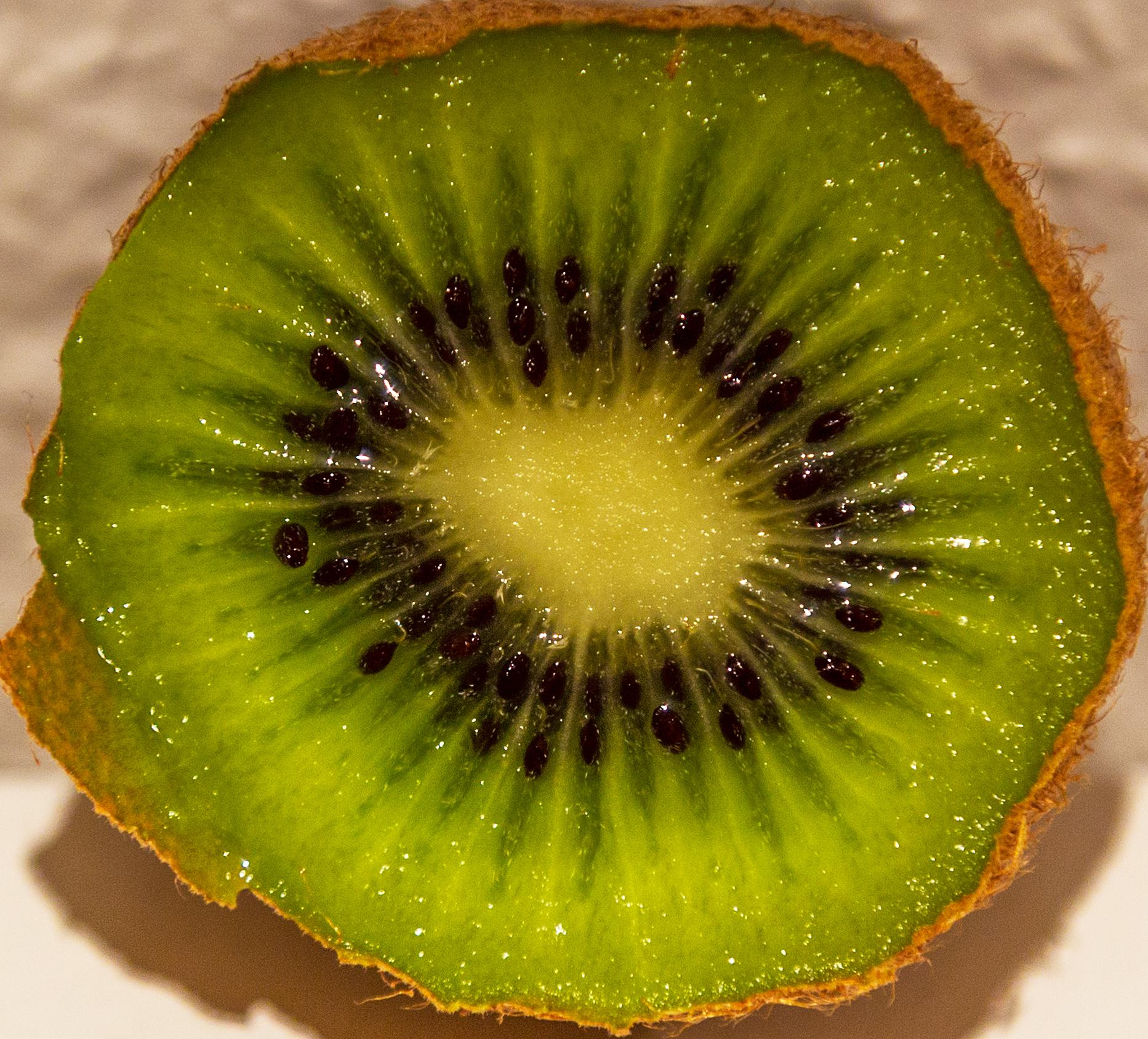 kiwi-7964 jpg.jpg