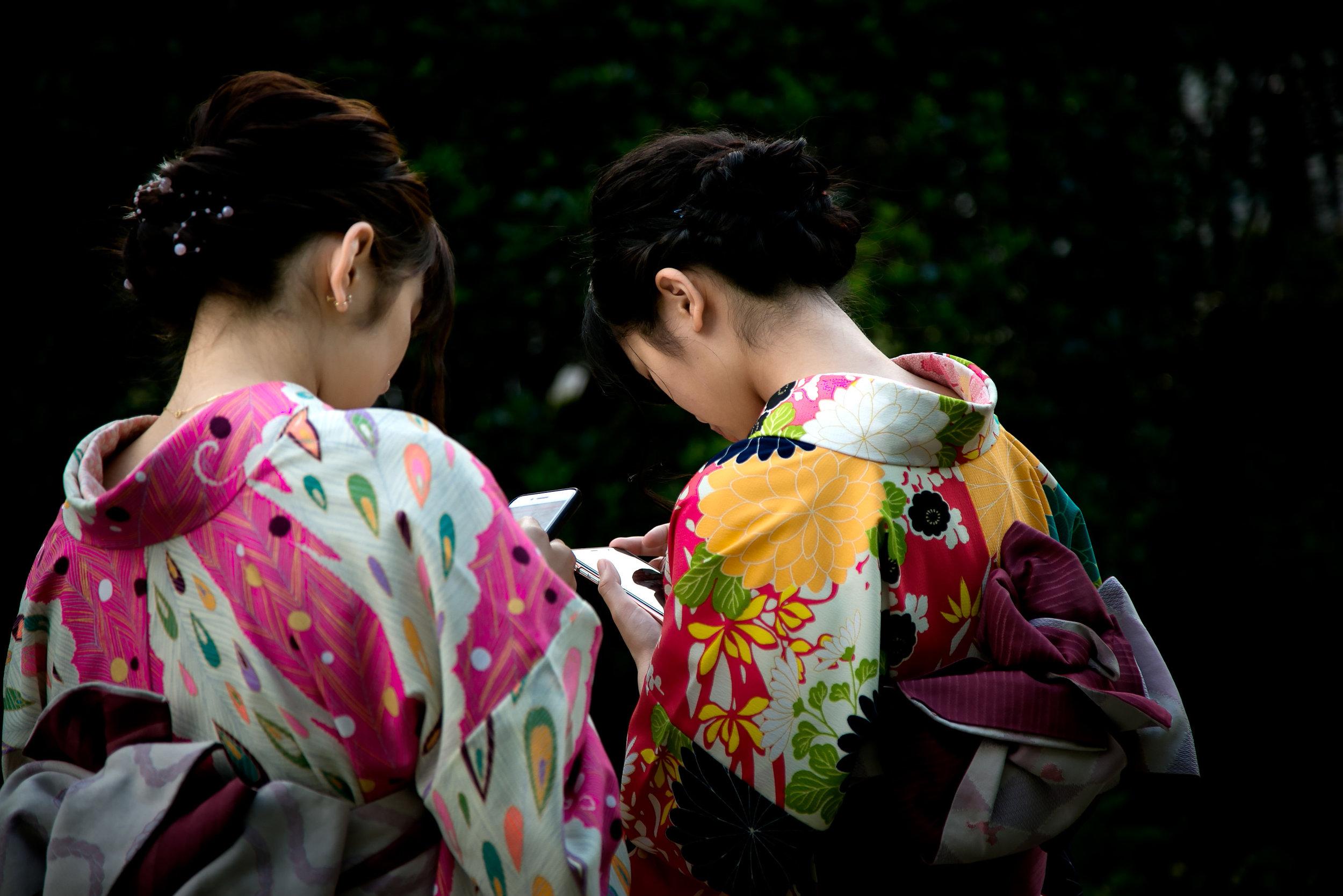 Kyoto-1 Contras color range.jpg