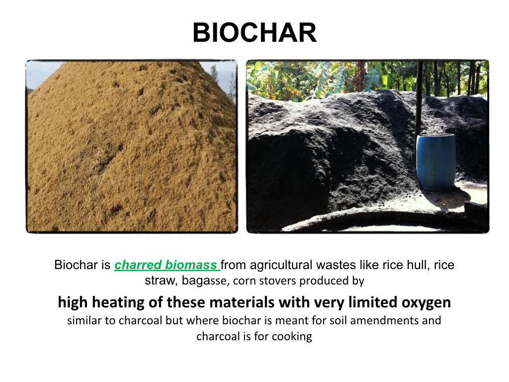 Biochar Presentation to DENR Workshop Lopez Center Sept 2016.002.jpeg