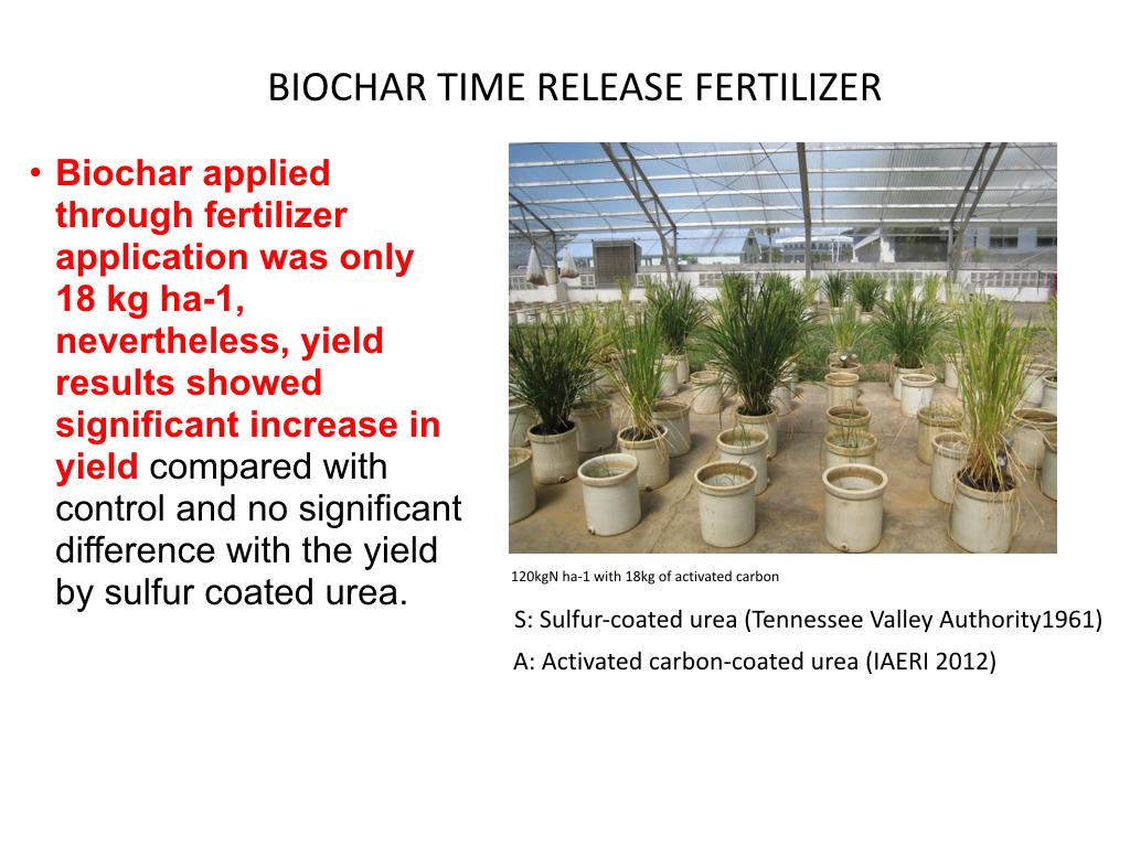 Biochar Presentation to DENR Workshop Lopez Center Sept 2016.026.jpeg