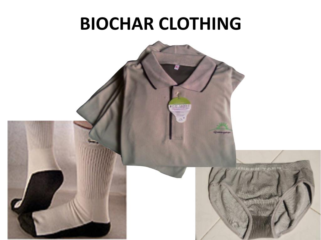 Biochar Presentation to DENR Workshop Lopez Center Sept 2016.038.jpeg