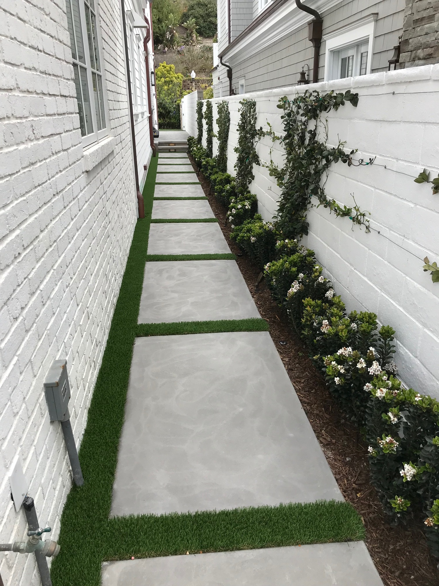Climbing vines done by DL Hickman and Son, one of the leading landscape contractors in Dana Point, California, United States