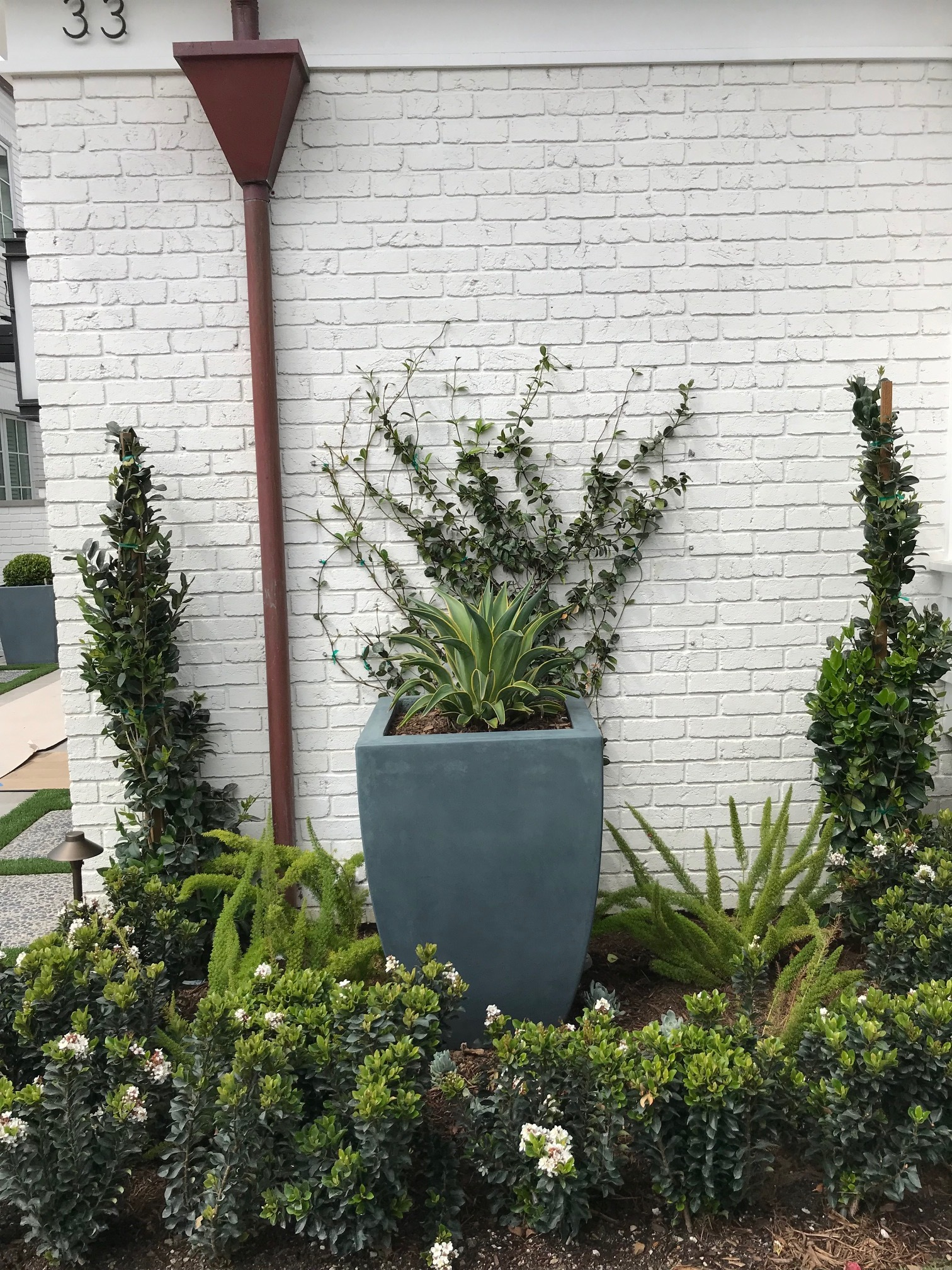 Plantings upgrading the look of the white construction in Dana Point