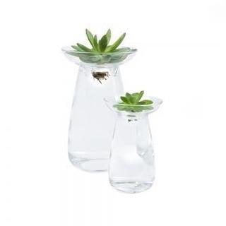 #vases #aquaculture #madeinjapan